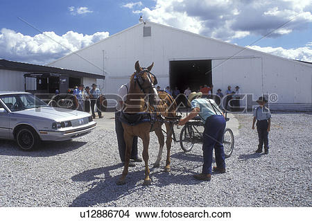 Stock Photo of amish, auction, Shipshewana, Indiana, Amish men are.