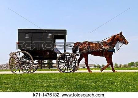 Stock Photo of Amish and Mennonites in their horse and buggies in.