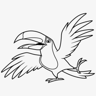 bird #toucan #color #colorful#freetoedit.