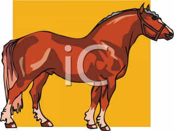 Clipart Picture of a Shire Horse.