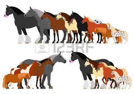 210 Shire Stock Vector Illustration And Royalty Free Shire Clipart.