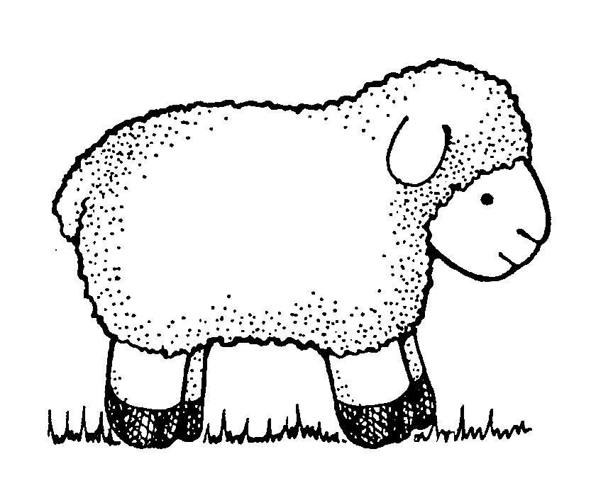 Similiar Lamb Art White And Black Keywords.