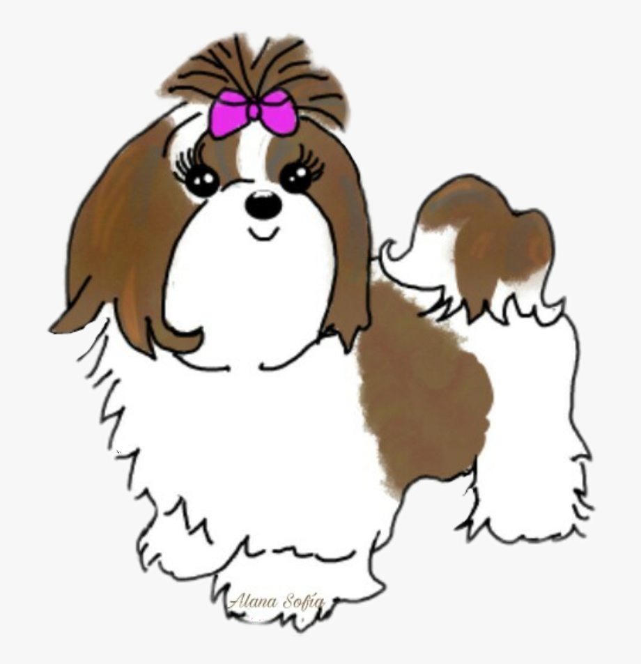 Clipart Dog Shih Tzu Face , Transparent Cartoon, Free.