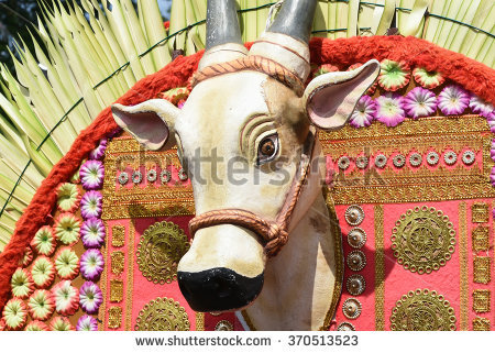 Nandi Stock Images, Royalty.