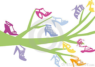 Shoe Tree Stock Photos.