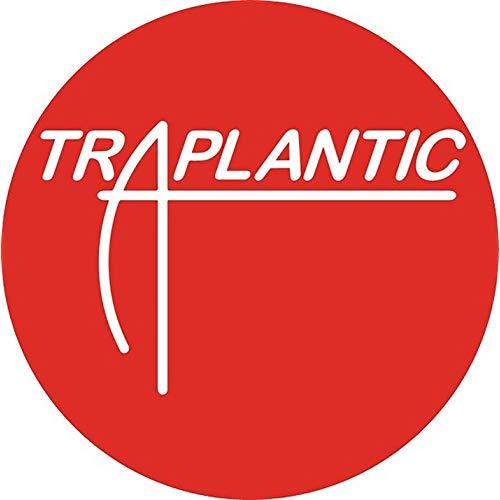 Shoreline Mafia Presents Rob Vicious: Traplantic [Explicit.
