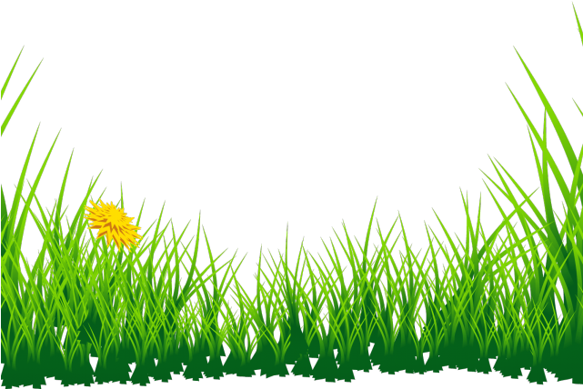 Meadow Clipart Short Grass.