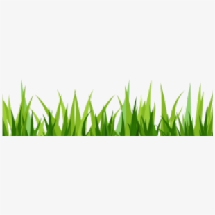 Grass Short Transparent Png.