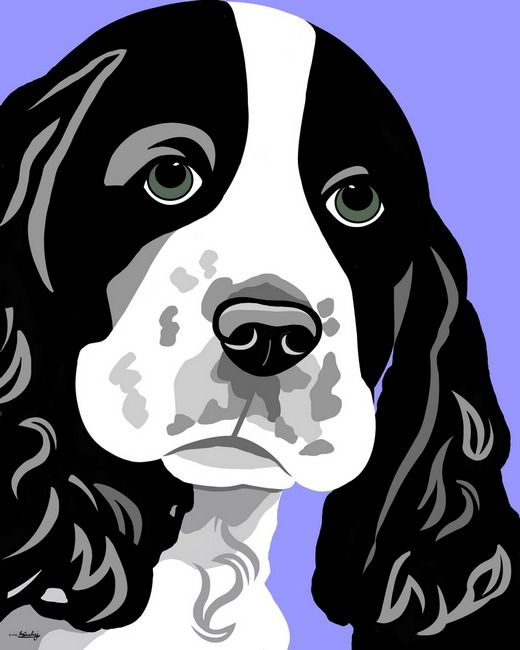 1000+ images about English Springer Spaniels on Pinterest.