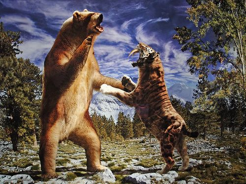 1000+ images about PREHISTORIC MAMMALS on Pinterest.