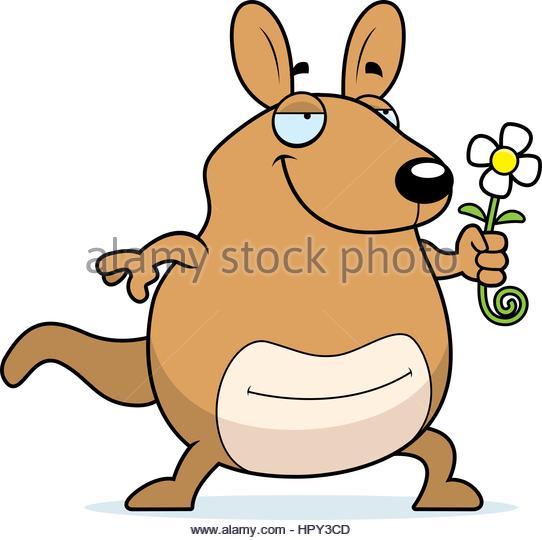 Illustration Of A Kangaroo Stock Photos & Illustration Of A.
