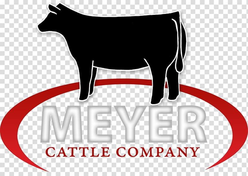 Meyer Cattle Company, Angus Cattle Shorthorn Gelbvieh.