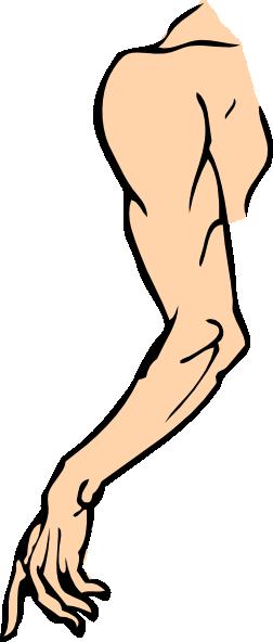 Shoulder Clipart.