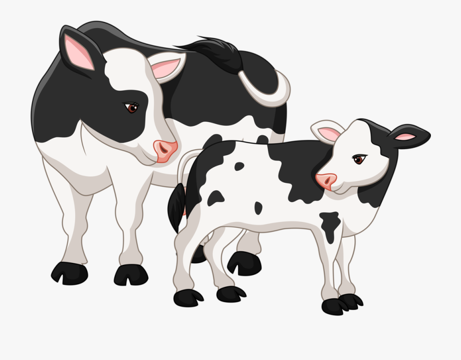 Clip Art Operation Angus Cattle Clip.
