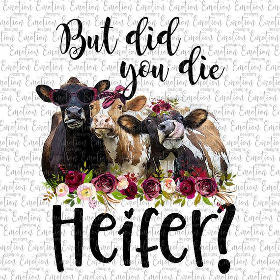 But did you die Heifer clipart, instant download.