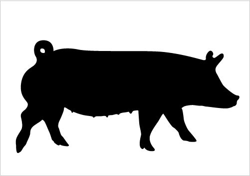 Silhouette Of A Pig.
