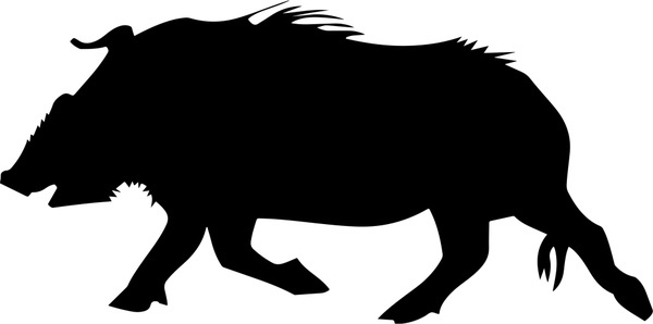 Boar hog free vector download (31 Free vector) for commercial use.