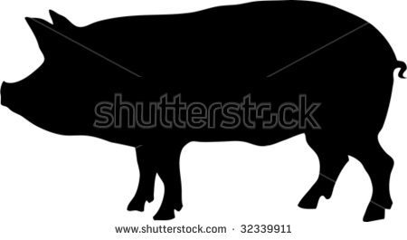 Black Pig Stock Images, Royalty.