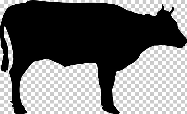 Beef cattle Welsh Black cattle , clarabelle cow PNG clipart.
