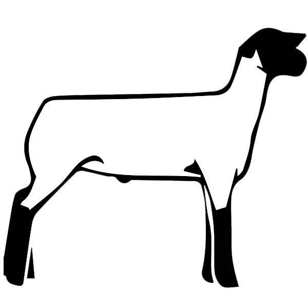 Sheep clipart clear background, Sheep clear background.