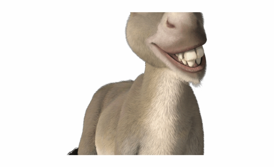 Donkey Clipart Shrek Donkey Donkey From Shrek.