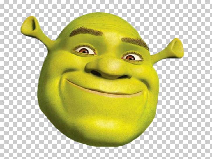 Andrew Adamson Shrek The Musical Donkey Princess Fiona.