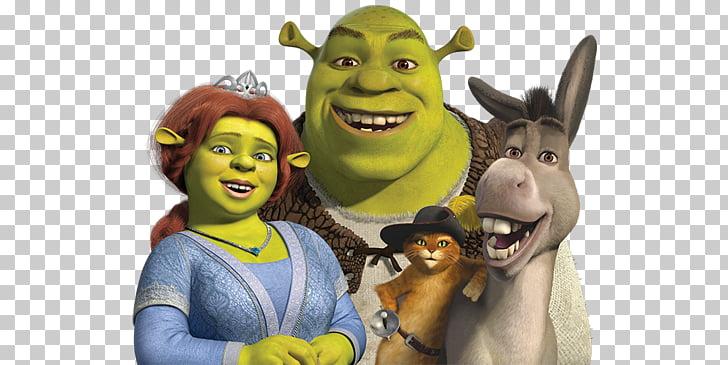 Princess Fiona Donkey T.