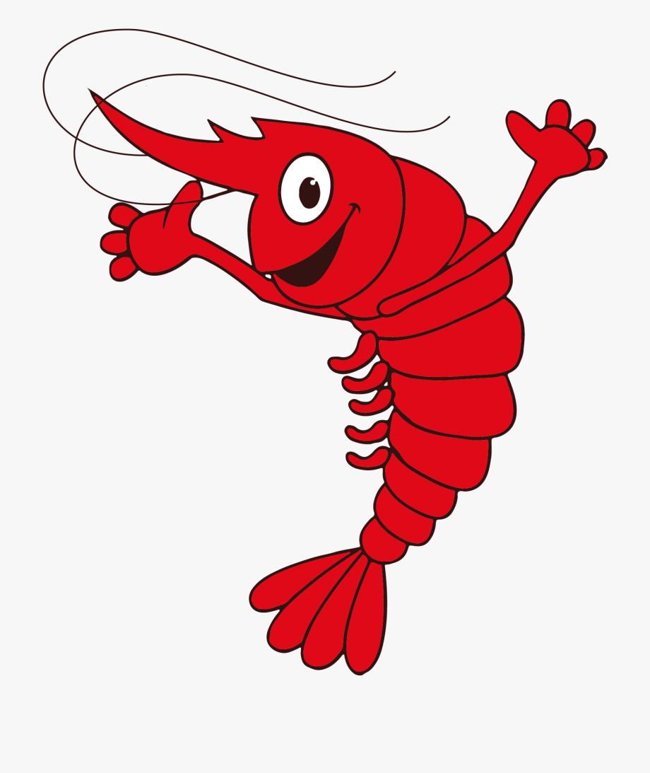 Shrimp Cartoon Shrimp Funny Png , Transparent Cartoon, Free.