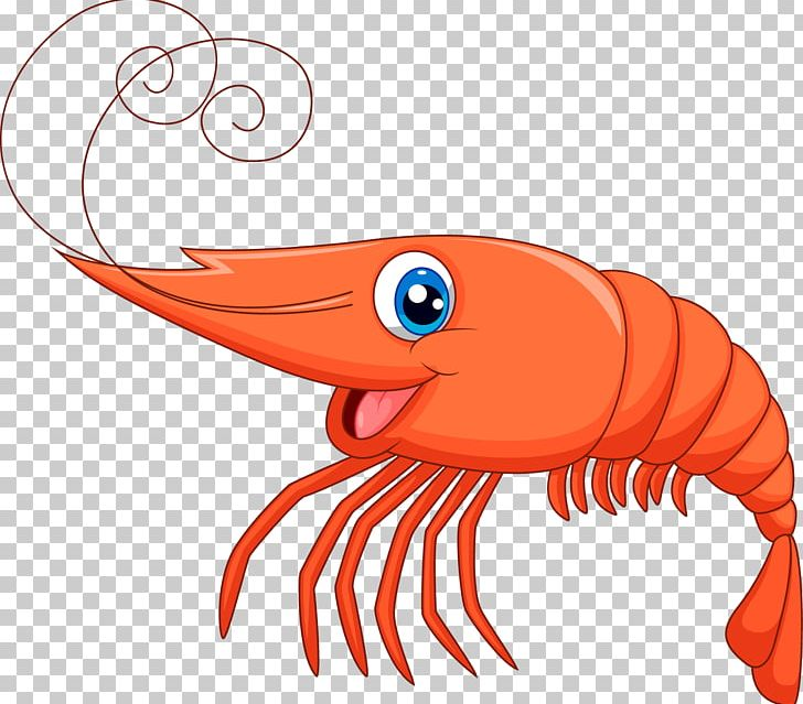 Shrimp PNG, Clipart, Animals, Art, Artwork, Beak, Cartoon.