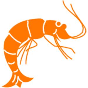 Shrimp clipart #18