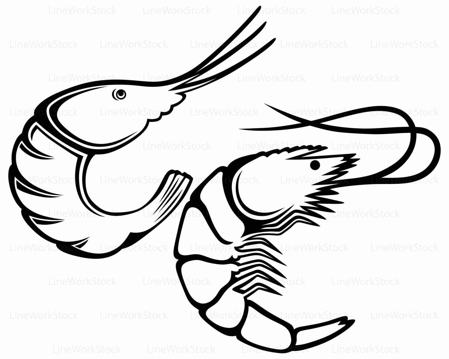Collection of Shrimp clipart.