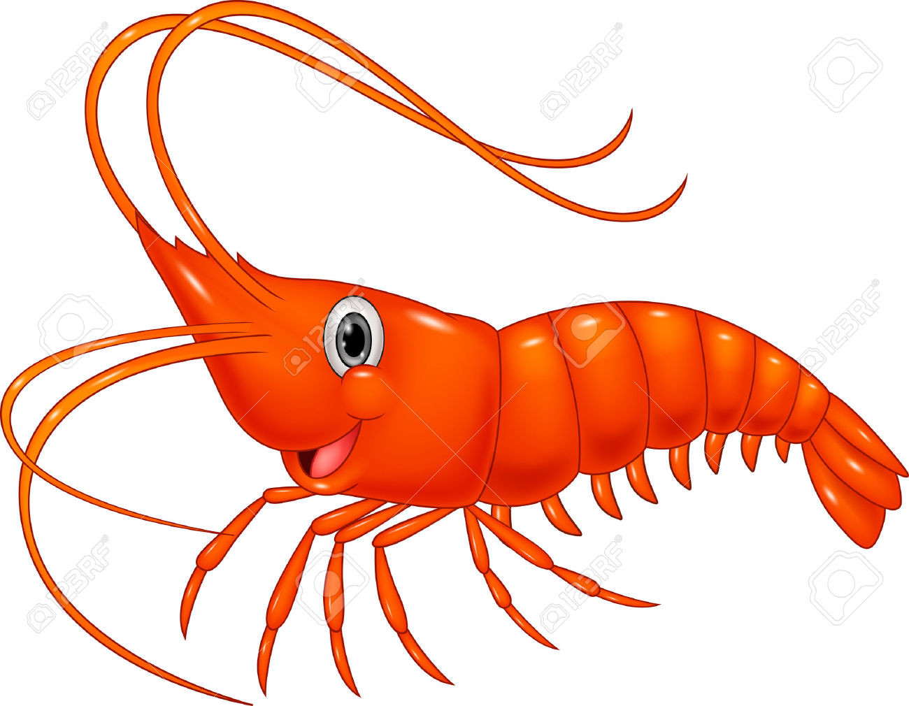 948 Shrimp free clipart.