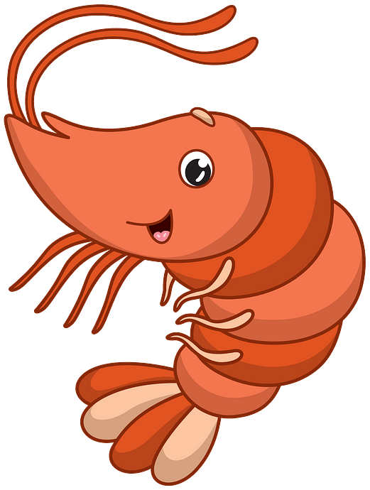Shrimp clipart. Free download..