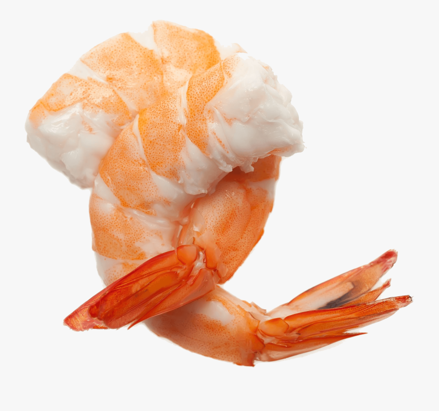 Shrimp Cocktail Png.