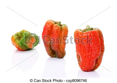 Stock Image of wrinkled green pepper on a white background.