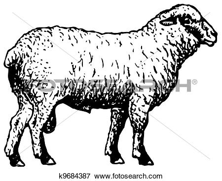 Clip Art of Shropshire sheep k9684387.