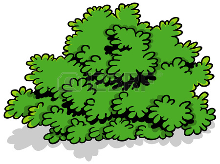 Showing post & media for Cartoon shrubbery clip art.