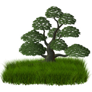 Trees and shrubs clipart.