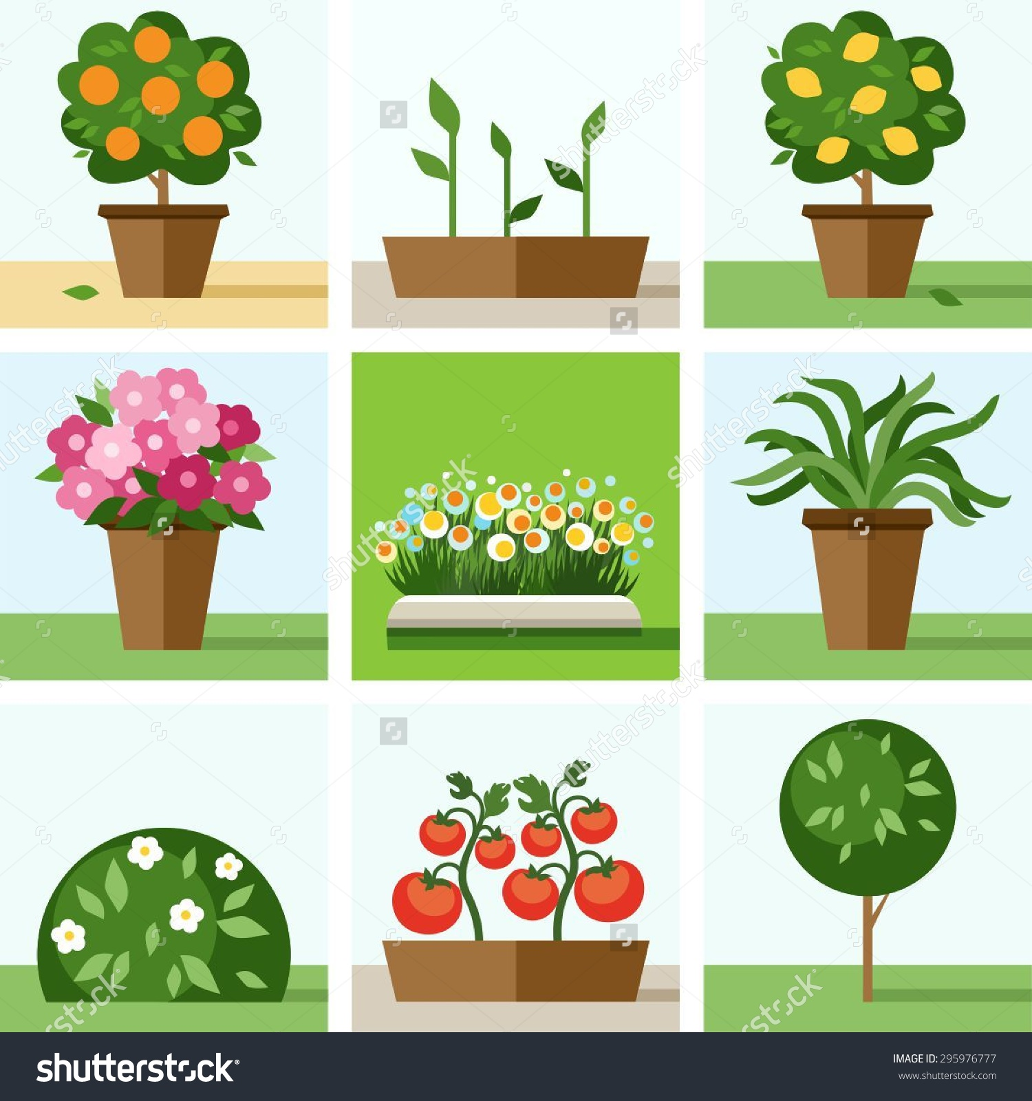 Garden Vegetable Garden Flowers Trees Shrubs Stock Vector.