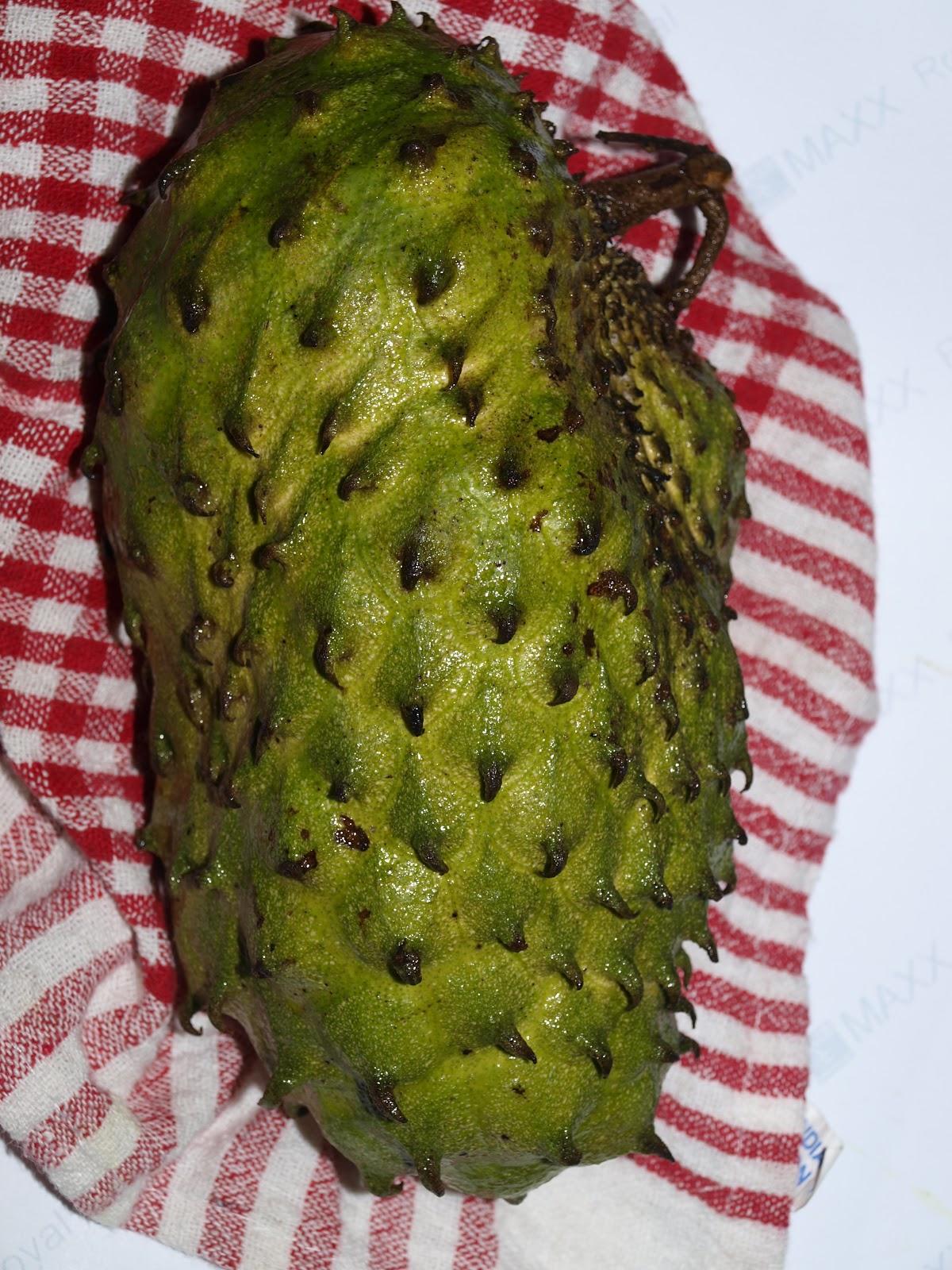 The Soursop fruit.