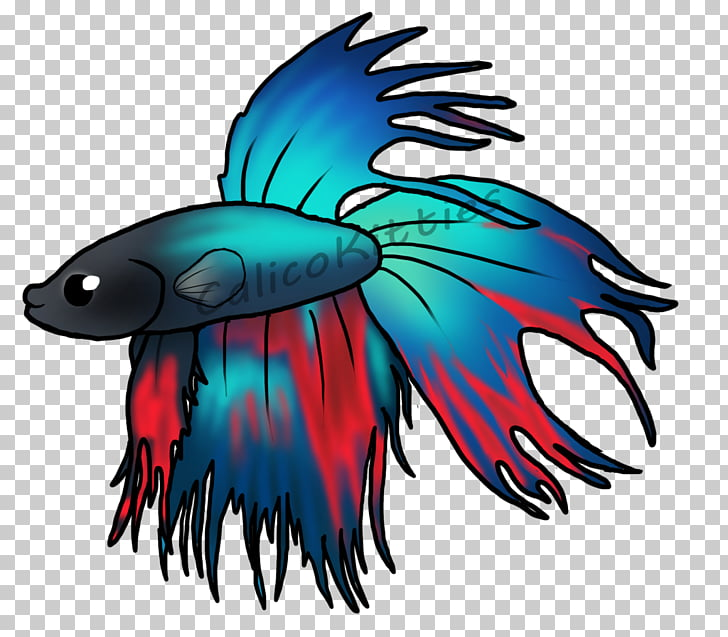 Siamese fighting fish Art Bird, betta PNG clipart.