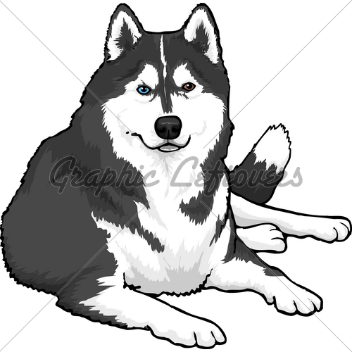 Similiar Siberian Husky Clip Art Keywords.