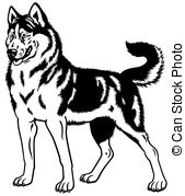 Husky Illustrations and Clipart. 1,660 Husky royalty free.