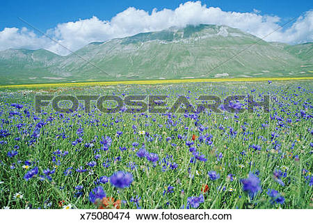 Stock Photo of Italy, Umbria, Monti Sibillini National Park.