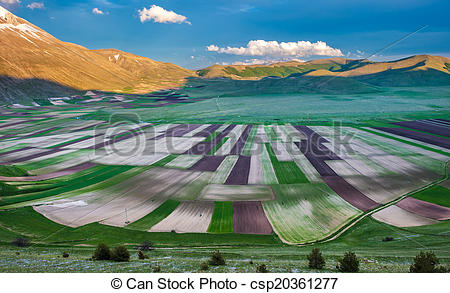 Picture of Piano Grande scenic fields and Sibillini mountains in.