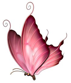 Side Of Butterfly Pink Clipart.