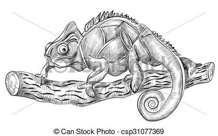 Clip Art Vector of chameleon lizard sitting on tree, side view.