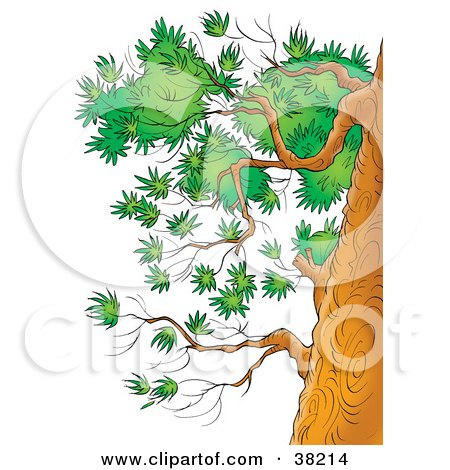Clipart of an Outlined Winter Tree with Robins.