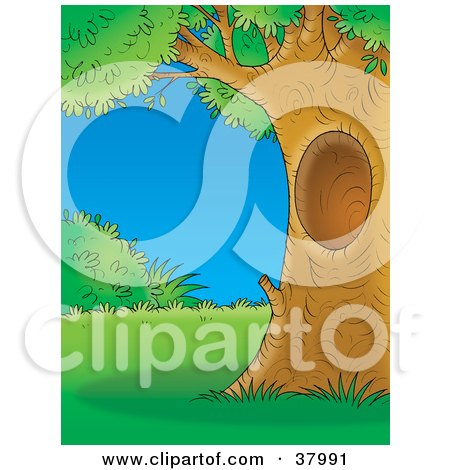 Clipart Illustration of The Sun Behind A Cluster Of Mature Trees.