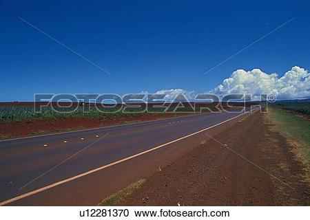 Stock Photography of a Country Road, Surrounded By a Flat Land.